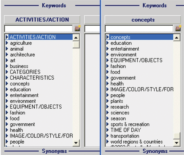 notes controlledvocab html  c  e    gif Picturepark